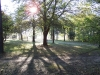 yard view 3